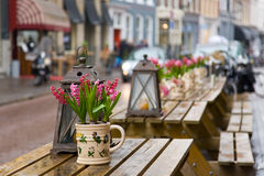 Cafe table with flowers. Focus on flowers Royalty Free Stock Photography