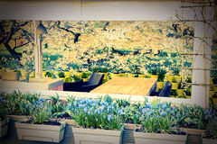 Cafe terrace in blooming garden Stock Photos
