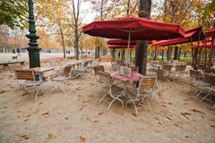Cafe in the Tuileries. Cafe with umbrellas in the autumnal park Tuileries in Paris Royalty Free Stock Photography