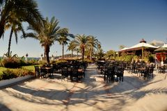 Cafe under the palms Royalty Free Stock Photography