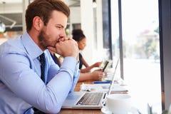 Cafetería de Using Laptop In del hombre de negocios imagen de archivo libre de regalías