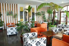 Cafeteria with green tropical indoor plant Royalty Free Stock Photo