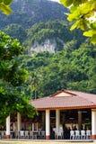 Caffè alla giungla tropicale Immagine Stock