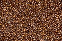 Caffè arrostito dalla Costa Rica Fotografia Stock