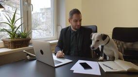 caffè bevente dell'uomo d'affari che lavora al computer portatile in ufficio che prende le note stock footage