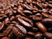Caffè dei granuli fotografia stock