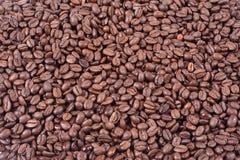Caffè del fagiolo Fotografia Stock Libera da Diritti