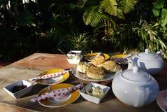 Caffè del giardino: tè informale di Devonshire Immagini Stock