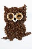 Caffè del gufo Fotografia Stock
