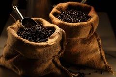 Caffè dell'arabica Fotografia Stock Libera da Diritti