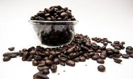 Caffè dell'intero fagiolo nella tazza Fotografia Stock