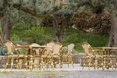 Caffè della pavimentazione sotto vecchio di olivo Fotografie Stock