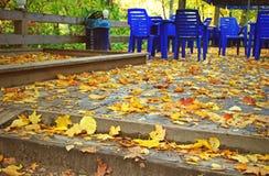 Caffè della via in autunno Immagine Stock