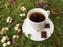 Caffè di autunno: tazza bianca con caffè nero su un fondo verde Fotografie Stock Libere da Diritti