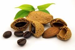Caffè e amande dei fagioli Immagini Stock