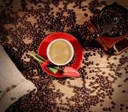 Caffè e chicchi di caffè caldi sui precedenti del tulipano dei macinacaffè Fotografie Stock