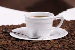 Caffè e chicco di caffè della tazza Fotografie Stock Libere da Diritti
