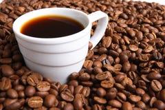Caffè e chicco di caffè della tazza Immagini Stock Libere da Diritti