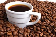 Caffè e chicco di caffè della tazza Fotografie Stock