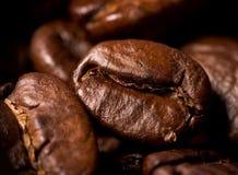 Caffè-fagioli Immagini Stock