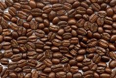 Caffè-fagioli Immagini Stock Libere da Diritti