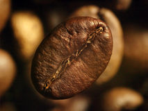 Caffè-fagiolo Fotografie Stock Libere da Diritti