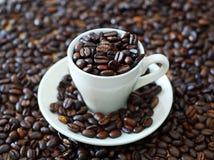 Caffè fresco Immagine Stock Libera da Diritti