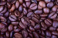Caffè fritto del granulo Fotografia Stock