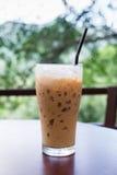 Caffè ghiacciato in caffetteria con sfondo naturale Immagini Stock Libere da Diritti