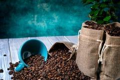Caffè macinato con le piante e la tazza del coffe Fotografia Stock Libera da Diritti