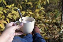 Caffè nel giardino Fotografie Stock