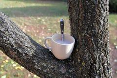 Caffè nel giardino Fotografia Stock