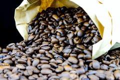 Caffè non macinato Immagine Stock