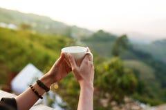 Caffè o tè caldo della bevanda sulla mano della donna di mattina al caffè all'aperto fotografia stock