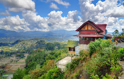 Caffè sulla strada con la vista del giacimento verde del riso in Tana Toraja Immagini Stock Libere da Diritti