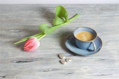 Caffè in una tazza blu - fondo grigio Immagini Stock Libere da Diritti