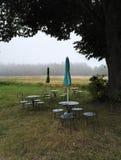 Caffe σε μια φύση Στοκ φωτογραφία με δικαίωμα ελεύθερης χρήσης