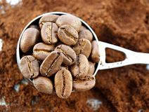 Caffe. Spoon of close-up cafe beans Stock Image