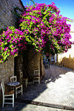 Caffe. Traditional greek restaurant empty tables and chairs in tree shade at sunny summer day Royalty Free Stock Image