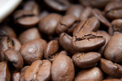 Caffee beans Royalty Free Stock Photos