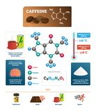 Caffeine vector illustration. Coffee ingredient from chemical science side. Labeled diagram with substance melting and boiling point. Nitrogen, carbon and royalty free illustration
