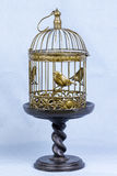 Cage à oiseaux Photo libre de droits