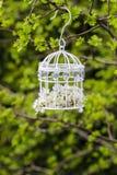 Cage à oiseaux avec des fleurs à l'intérieur Photo stock