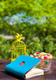 Cage à oiseaux décorative, livre avec le coeur et sucrerie Images stock
