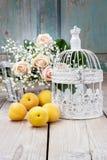 Cage à oiseaux de vintage, belles roses roses et paniculata de gypsophila Photos stock