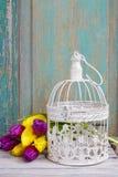 Cage à oiseaux de vintage et bouquet des tulipes jaunes et violettes Photographie stock libre de droits