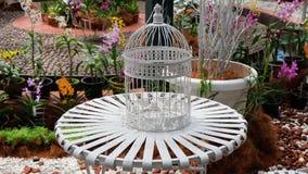 Cage à oiseaux sur la table dans le jardin Photographie stock libre de droits