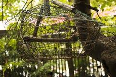 Cage à oiseaux vide Images stock