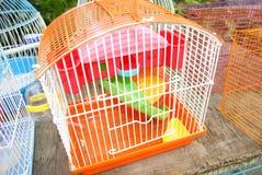 Cage Image libre de droits