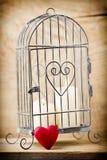 cage Images libres de droits